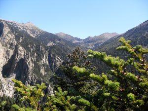 Le Canigou au sommet