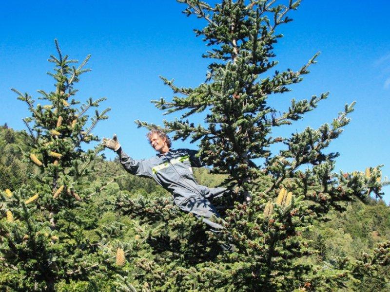 """Abies Lagrimus dans L'Indépendant : """"Vendanges du vertige à la cime des sapins du massif du Canigó"""""""